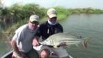 شکار در رودخانه ی زامبیزی در آفریقا
