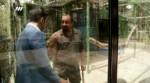 مستند اجتماعی شوک: قاچاق حیوانات