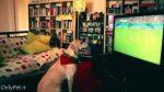 بامزه: شادی سگ فوتبال دوست!