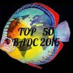 ۵۰ طراحی بیوتوپ برگزیده از رقابت طراحی دکور BADC 2016