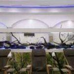 نصب و راه اندازی اکواریوم اب شیرین با طول 6 متر!